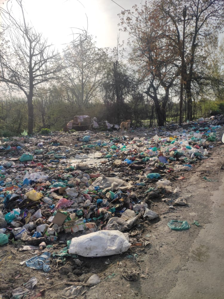 Addressing the Plastic Waste Challenges in the Kashmir Valley